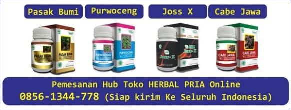 obat herbal pasak bumi